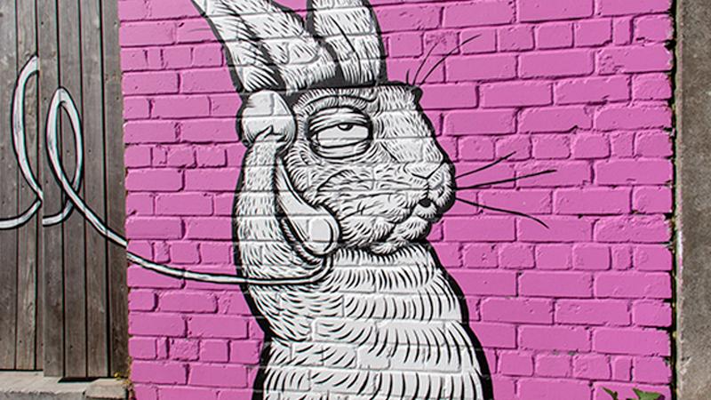 rabbitonphone